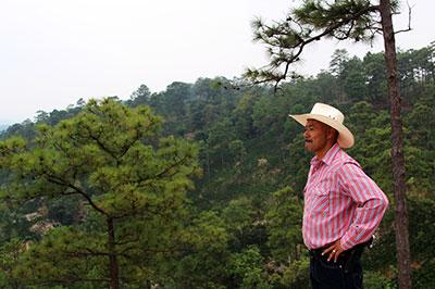 Al Lopez looking out over Finca Terrerito farm